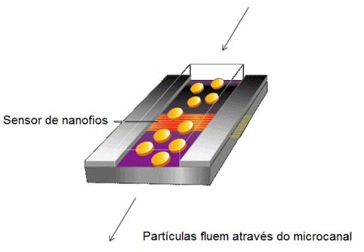 microcanal