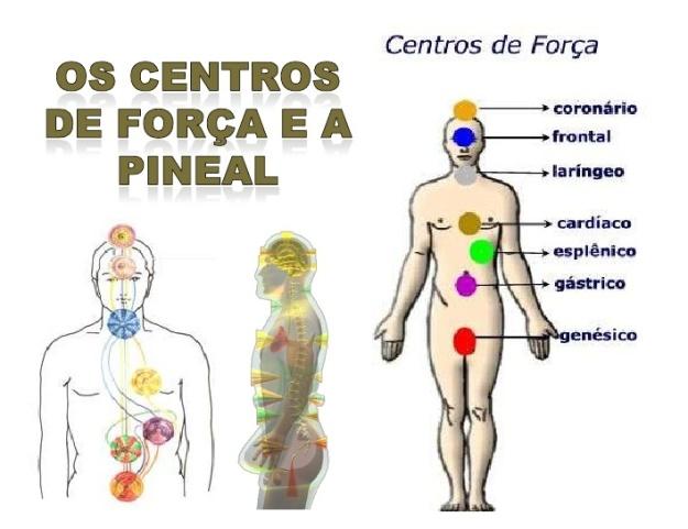 os-centros-de-fora-e-a-pineal-1-728